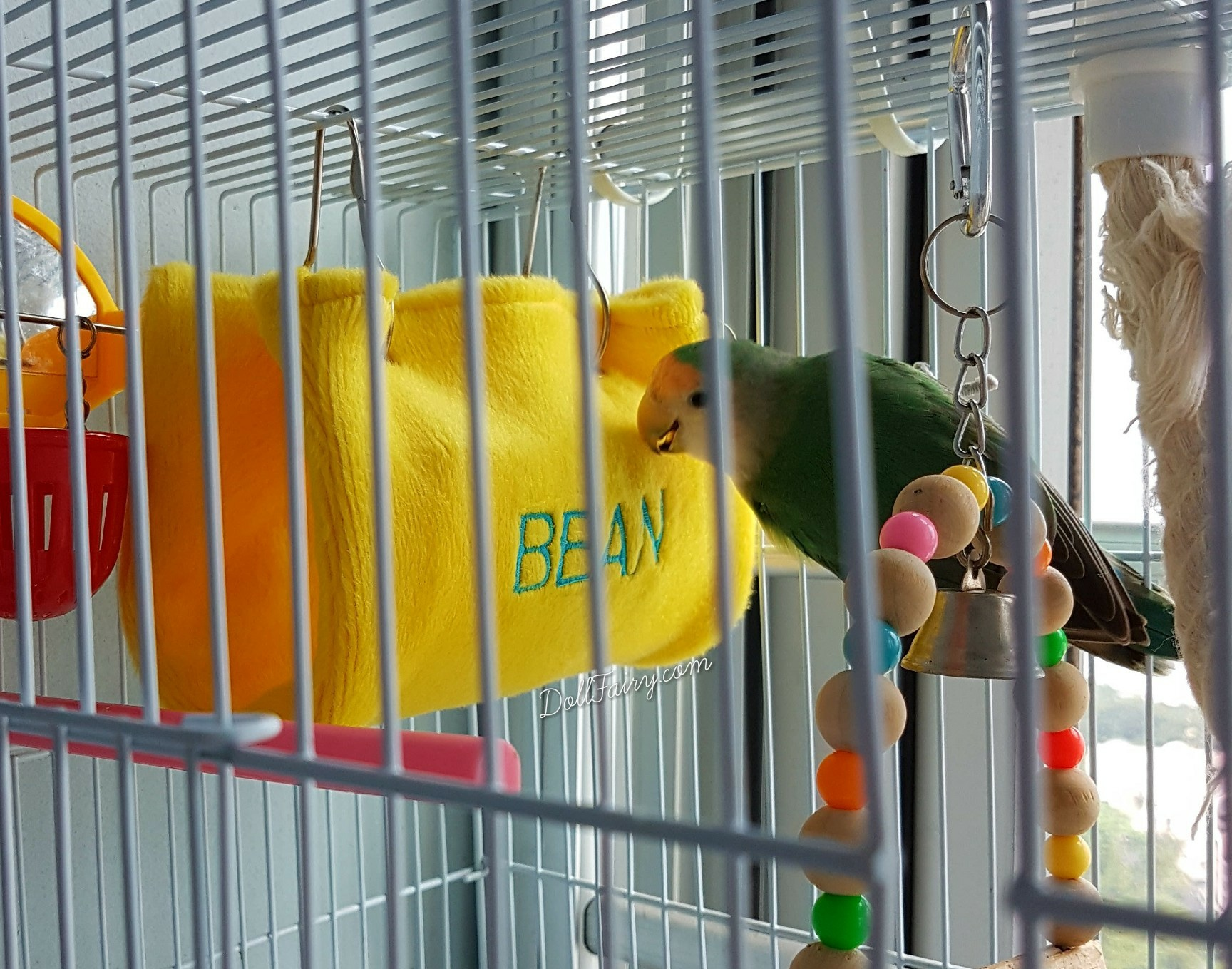 Cosy Bird Hut, Personalised with its Name.
