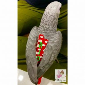 Rio African Grey Parrot Diaper Flight Suit