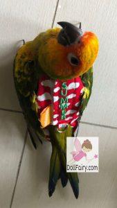 Summer Sun Conure Bird Diaper Flight Suit