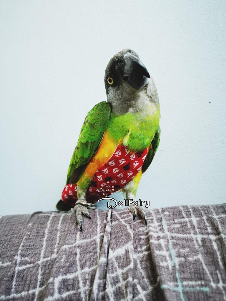 Bird Diaper Flight Suit With Yacht Print